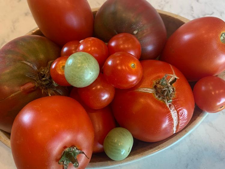 Fresh Garden Tomatoes for Keto tomato tart