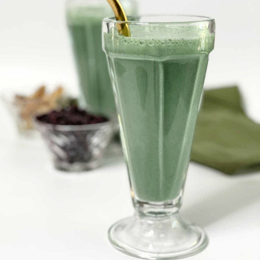 Keto Blueberry Protein Smoothie FEATURE 2